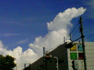 いい天気!!